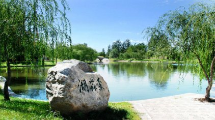也是宁夏省级森林公园和全国科普教育基地,位于银川市南环绕城高速