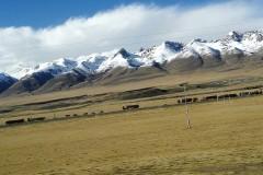 西藏之行,我们的圆梦之旅(续1)