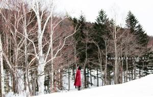 【北海道图片】冬の北海道·霓虹再遇见——100%完美的白色情人结