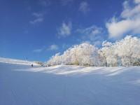 留寿都滑雪场