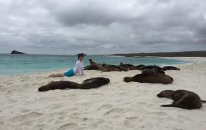 【加拉帕戈斯群岛图片】第三次来到加拉帕戈斯群岛-每一次都不想离开...