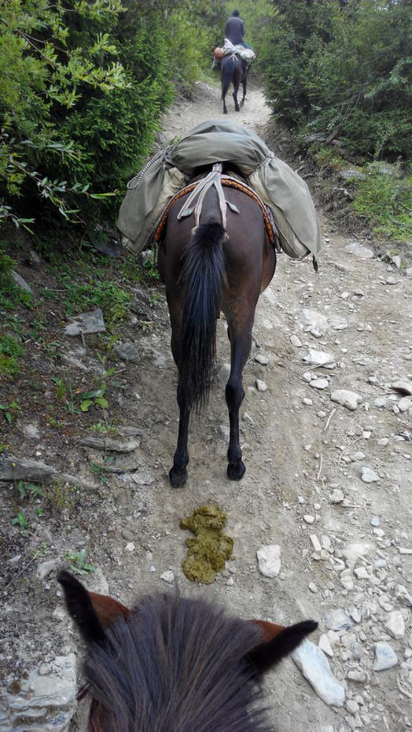 川西旅游攻略 2014暑假甘南,川西北行之八——松潘县(二)骑马牟尼沟