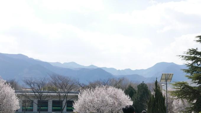 西安骊山风景区logo
