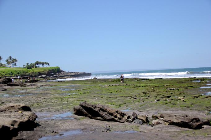 上,海神和传说中的千年海蛇以其神威保佑着岛上的居民免受海水的肆