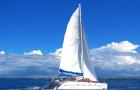 毛里求斯鹿岛双体船一日游(中文导游+水上三项+海底漫步+BBQ午餐+酒店接送)