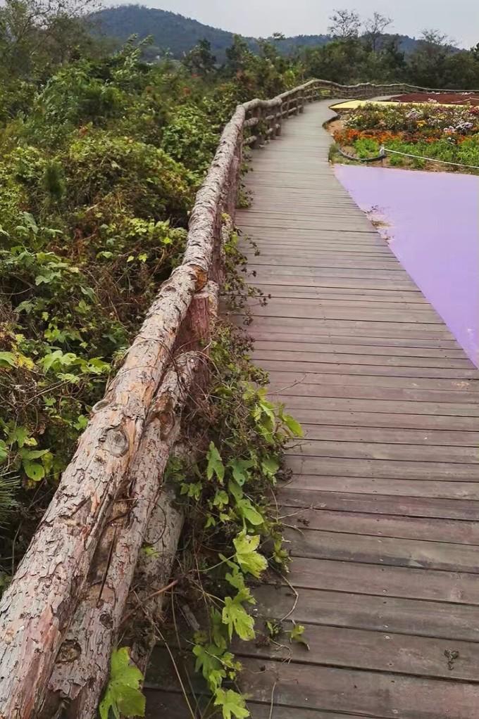 青岛西海岸美景之 - 西海岸生态观光园