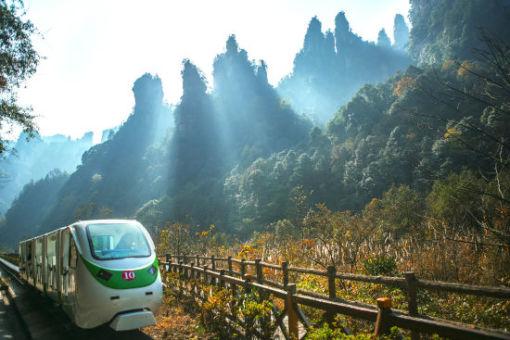 独立小包团:张家界国家森林公园二日游