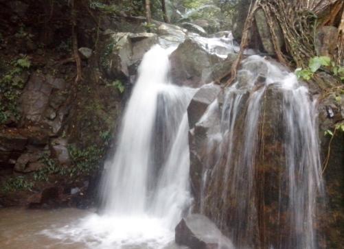 保亭 七仙岭国家森林公园