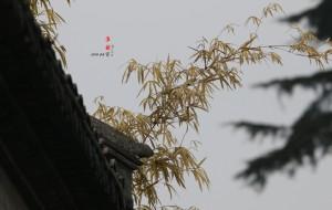 【淮安图片】两千里路下淮杨  (之一淮安篇)