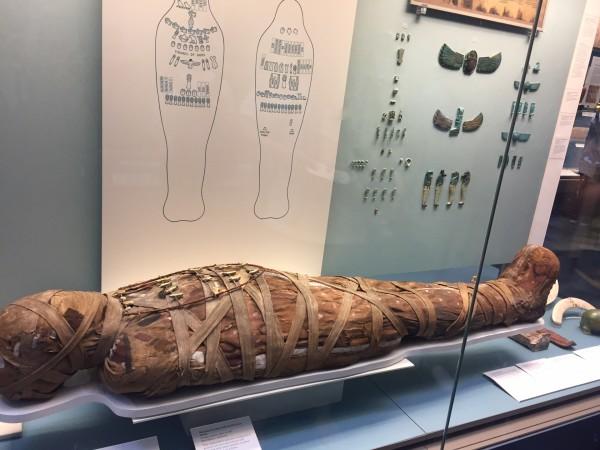 代,去到   埃及   ,见证某位英俊法老的一生   了解了木乃伊制作过程   图片
