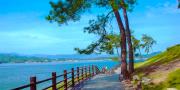【千岛湖纯玩一日游】黄山本地出发(散客拼团)