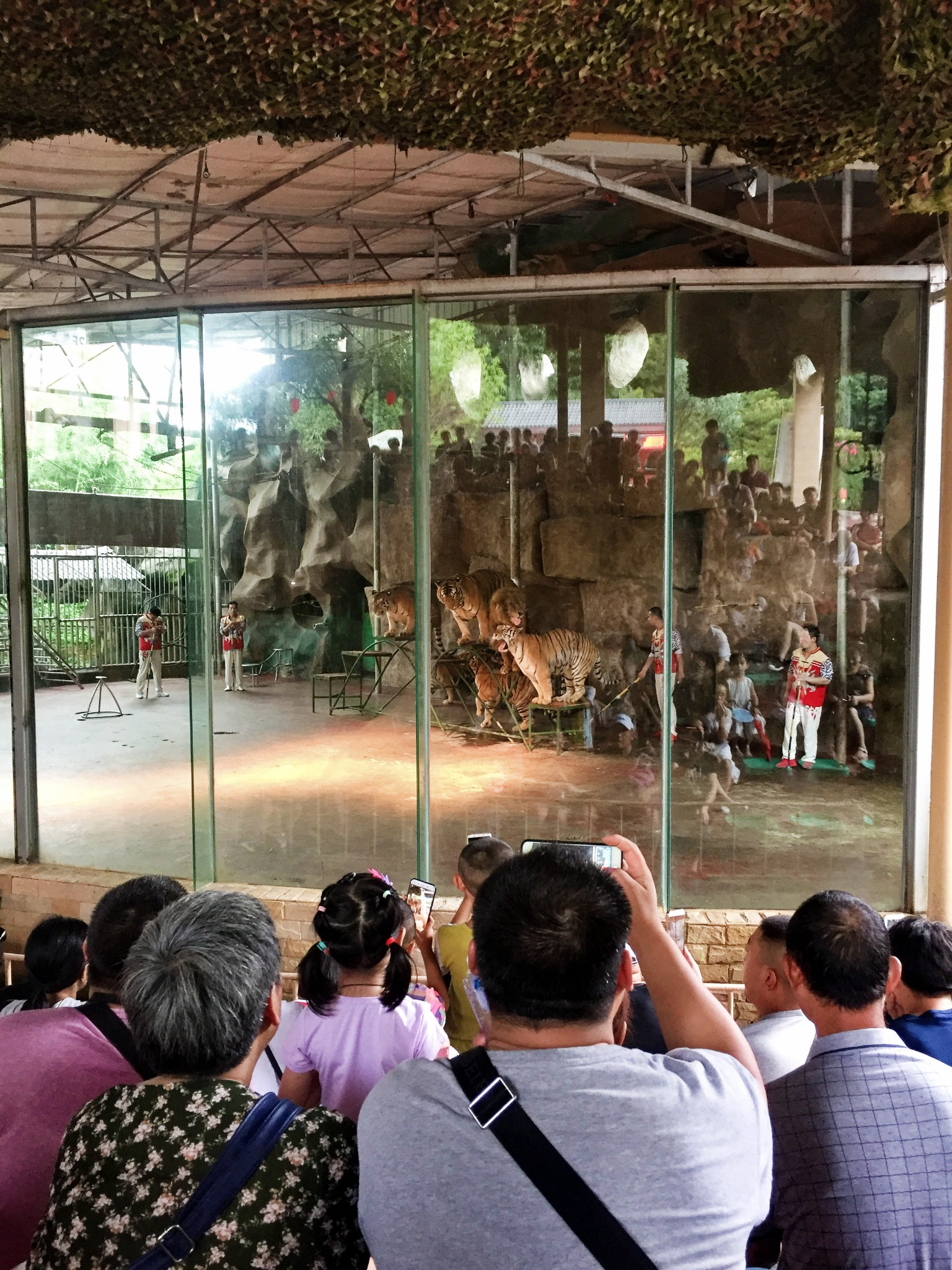 YaAn BiFengXia Wild Life zoo Park