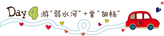 """第四天:游""""弱水河""""   赏""""胡杨"""""""