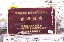 登雍布拉康走访哲古镇